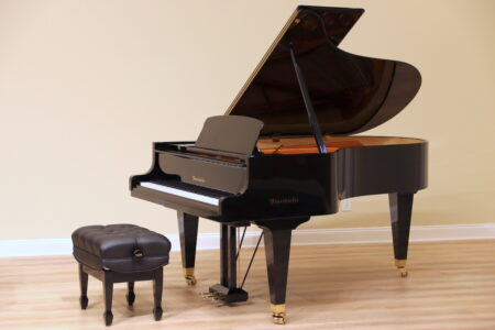 used Bösendorfer model 200