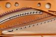 BSD280VC_plate9