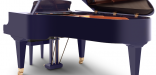 BSD214VC_purple9
